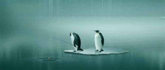 Как создать резервную копию и восстановить профиль Chrome в Linux
