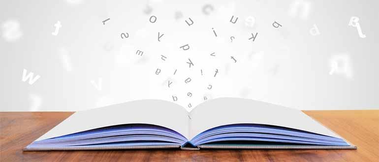 открыть большой текстовый файл