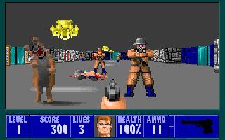 Скриншот игры Wolfenstein 3D
