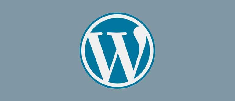 Как написать статью в WordPress через визуальный и html редактор